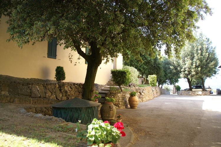 Borgo Montecolognola  Frantoio - Apartment - Magione