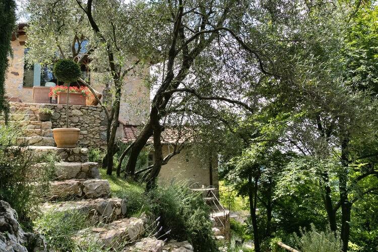 Stefienile - Accommodation - Camaiore