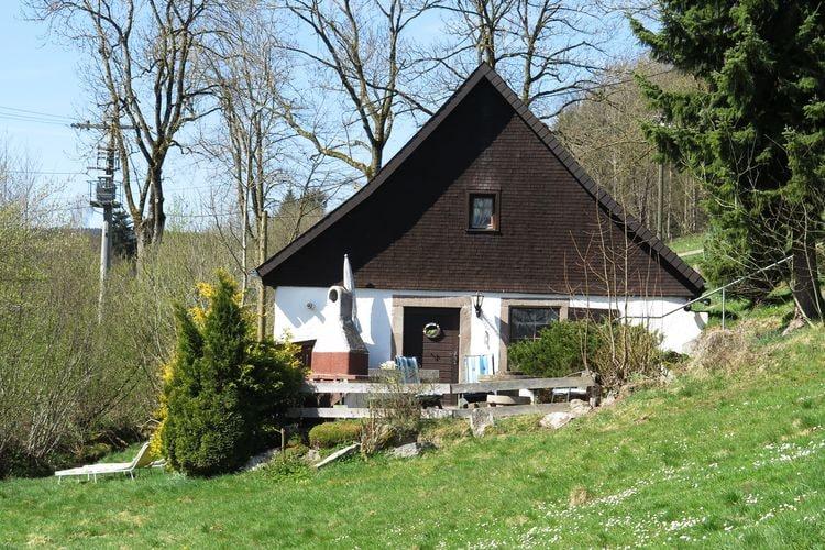 Vakantiewoning    Sankt Georgen ot Brigach  Vakantie in originele Hofmühle in Zwarte Woud - Vakantiehuis met terras en tuin