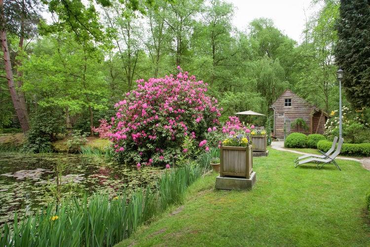 Chalet België, Limburg, Opglabbeek Chalet BE-3660-04