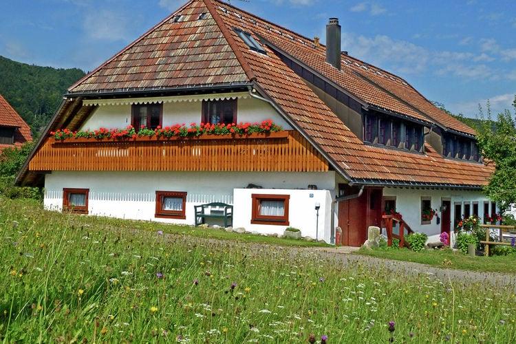 Duitsland | Baden-Wurttemberg | Appartement te huur in Rickenbach-ort-Hottingen   met wifi 8 personen