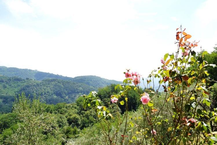 Villa Italië, Toscana, Marliana Villa IT-51010-24