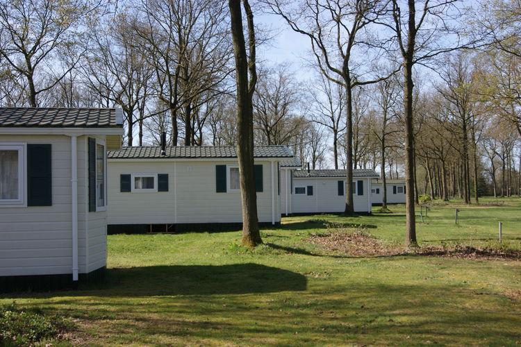 Chalet Drenthe