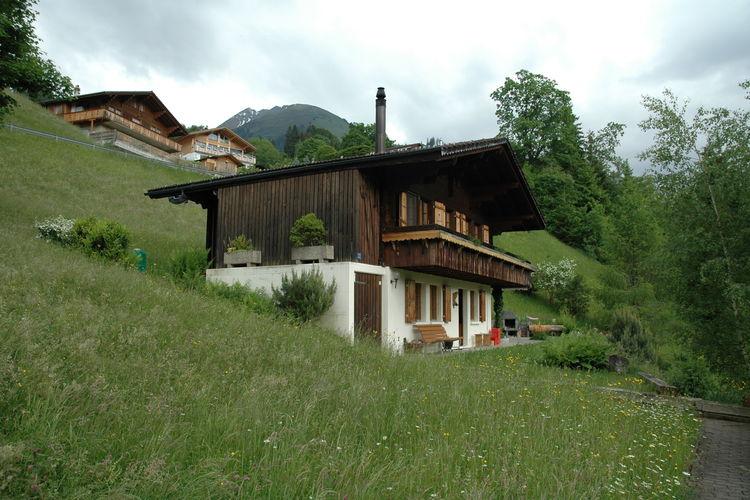 Chalet zwitserland, Bern, Horboden Chalet CH-3755-06