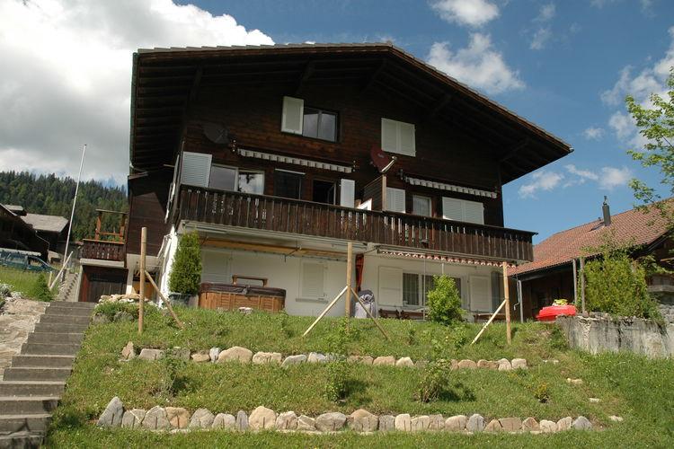 Chalet Zwitserland, Bern, Eriz Chalet CH-3619-01