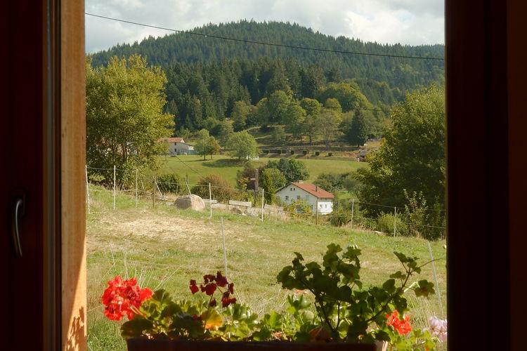 Chalet Frankrijk, Vogezen, Gérardmer Chalet FR-88400-30