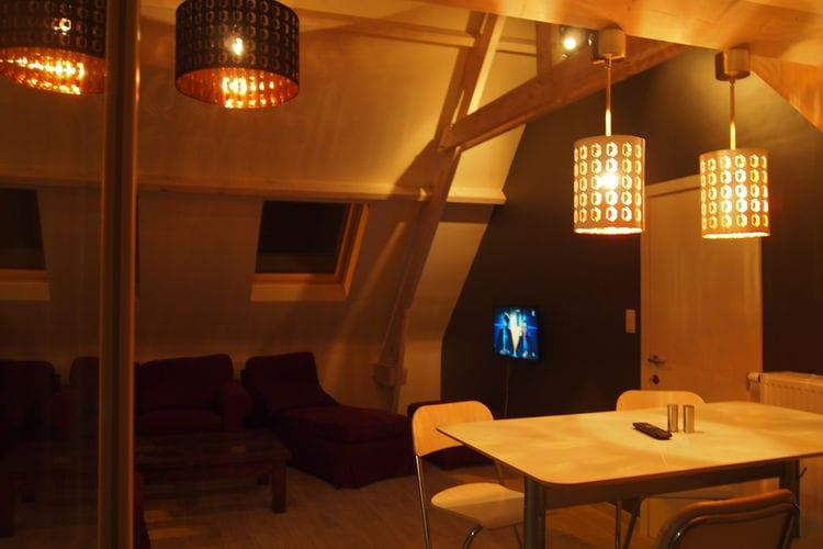 vakantiehuis België, Henegouwen, Ellezelles vakantiehuis BE-7890-07