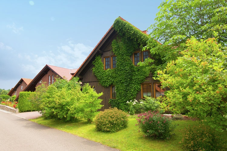 Vakantiehuis  met wifi  Vöhl - Obernburg  Kellerwald-Edersee