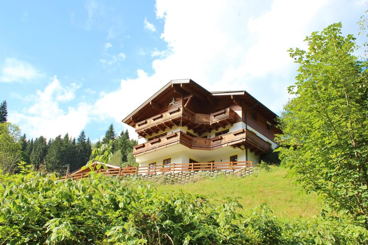 Alpensteinbock Saalbach D - Chalet - Saalbach Hinterglemm