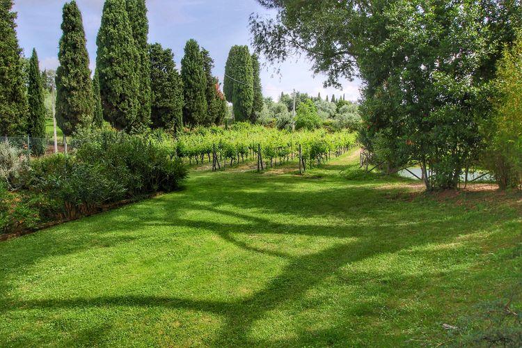 Villa Italië, Toscana, Sinalunga Villa IT-53048-09