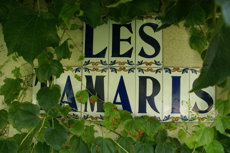 Ferienhaus Domaine de Chaberton  Maison 'Les Tamaris' (1741770), Aigues Mortes, Mittelmeerküste Gard, Languedoc-Roussillon, Frankreich, Bild 30