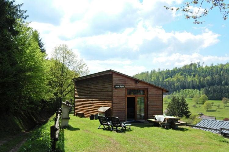 vakantiehuis Frankrijk, Vogezen, Walscheid Eigenthal vakantiehuis FR-57870-09