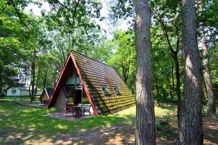 vakantiehuis Nederland, Limburg, Stramproy vakantiehuis NL-6039-32