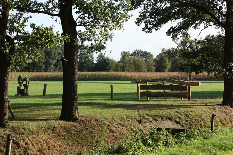 Ferienhaus Tuinpad (256887), Geesteren OV, , Overijssel, Niederlande, Bild 23