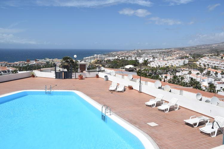 Appartement Spanje, trfe, San Eugenio Alto, Adeje, Tenerife Appartement ES-00001-62