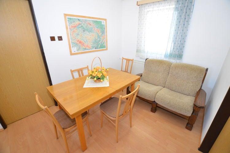 Appartement Tsjechië, Reuzengebergte - Jzergebergte, Rokytnice nad Jizerou Appartement CZ-51244-24