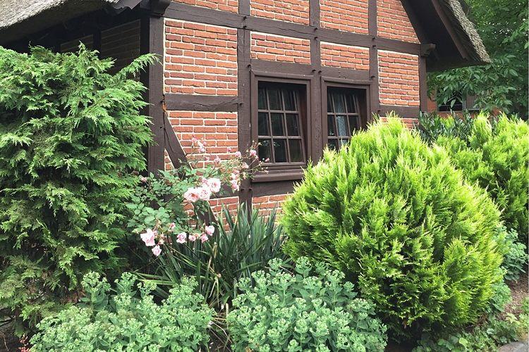 vakantiehuis Duitsland, Nedersaksen, Kirchdorf vakantiehuis DE-27245-03