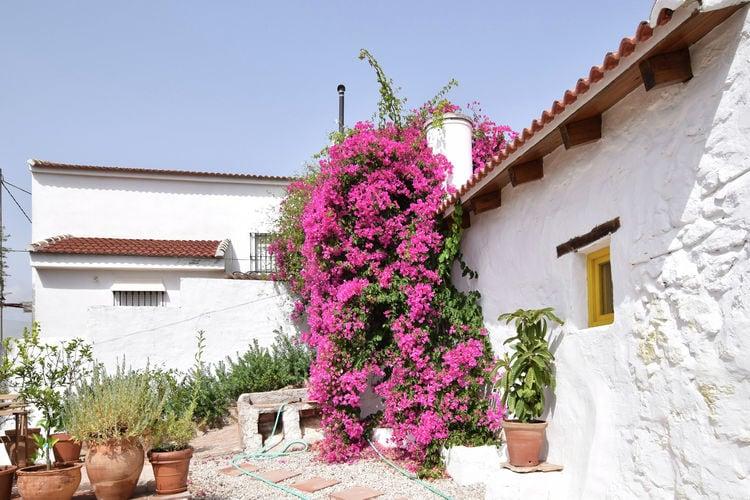 vakantiehuis Spanje, Andalucia, Arroyo Coche vakantiehuis ES-29239-01