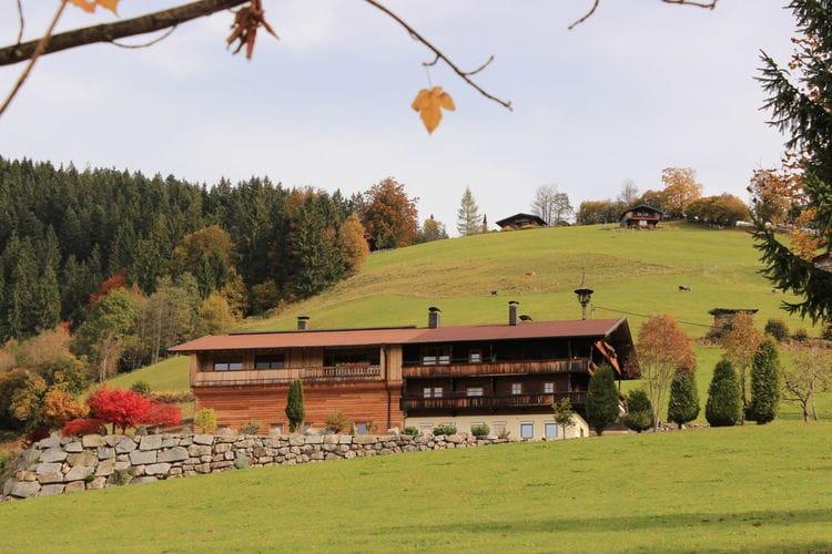 Oberschweiberhof - Apartment - Niederau