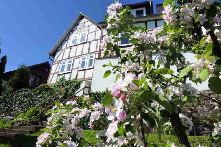 Vakantiehuizen Battenberg te huur Battenberg- DE-35088-18   met wifi te huur