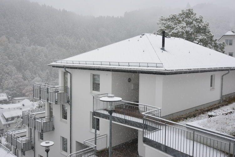 Vakantiehuizen Duitsland | Sauerland | Appartement te huur in Willingen    6 personen