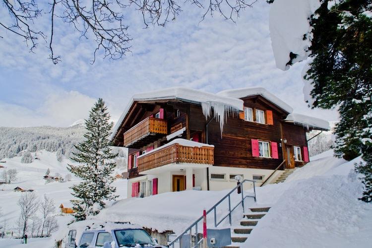 Grindelwald 36 - Chalet - Grindelwald
