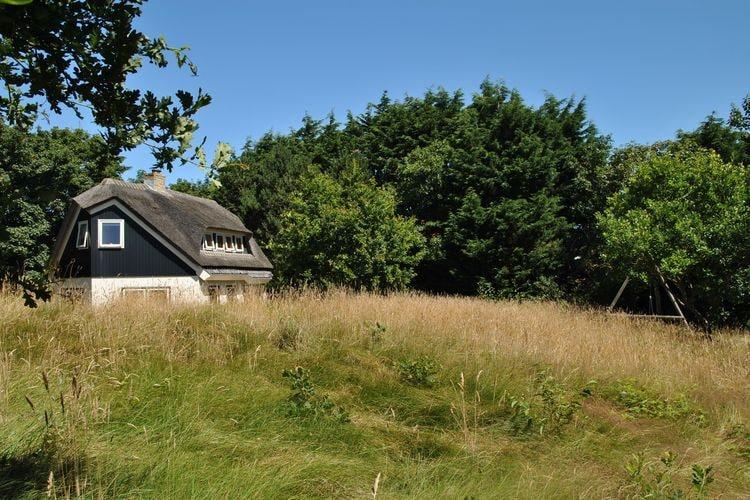 De Kerkuil  Frisian Islands Netherlands