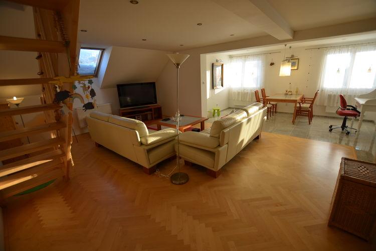 Appartement Tsjechië, Reuzengebergte - Jzergebergte, Rokytnice nad Jizerou Appartement CZ-51245-05
