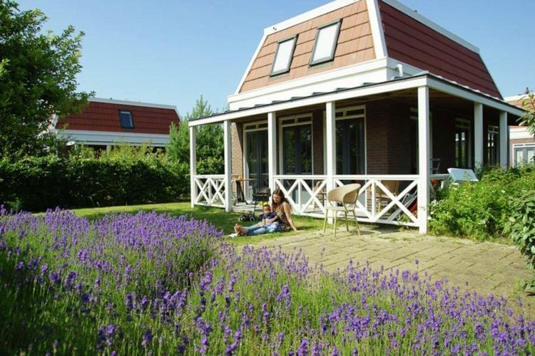 Vakantiewoning Nederland, Zuid-Holland, Noordwijk vakantiewoning NL-2204-46