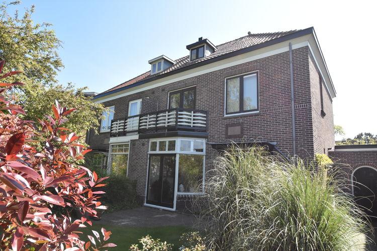 Vakantiewoning  met wifi  Haarlem  Karakteristiek familiehuis dichtbij strand, zee en stad. Grote zonnige tuin.