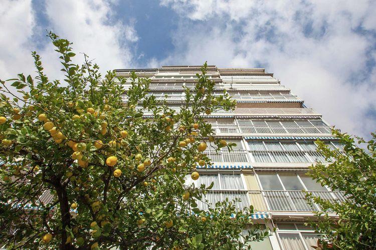 Apartment Costa Blanca