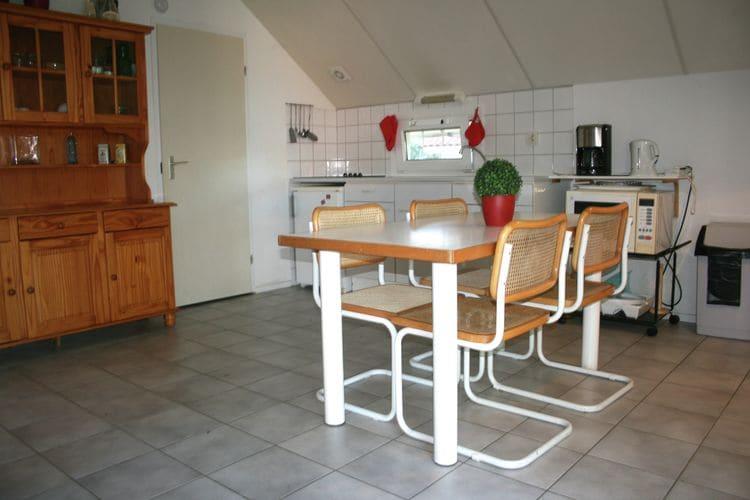 Vakantiewoning Frankrijk, Midi-pyrenees , Daumazan-Sur-Arize vakantiewoning FR-09350-05