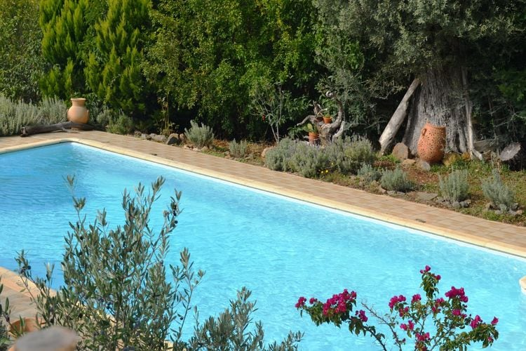 Holiday house Evia Fox House (2084644), Nerotrivia, , Euboea, Greece, picture 9