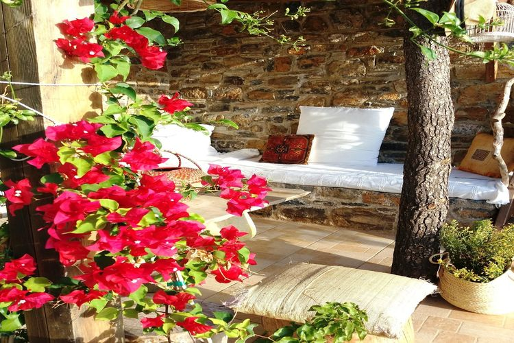 Holiday house Evia Fox House (2084644), Nerotrivia, , Euboea, Greece, picture 33