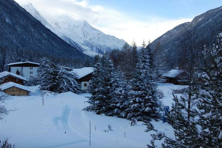 Edelweiss apartment - Apartment - Chamonix