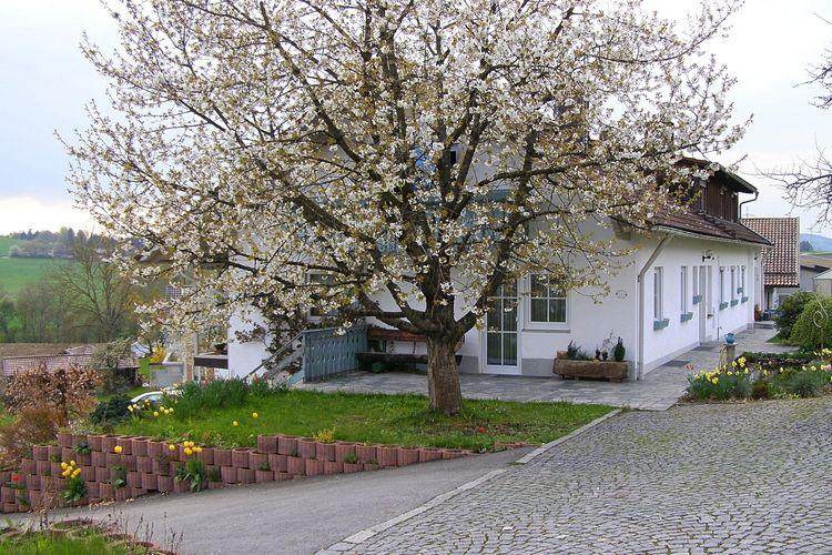 Appartement  met wifi  RohrnbachIm Bayerischen Wald