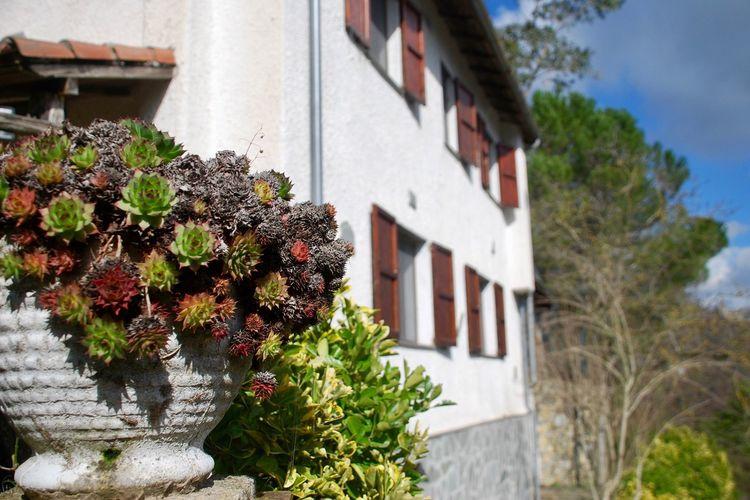 Vakantiewoning    Stellanello  Rustiek huis op het platteland voor een vakantie met veel ontspanning en privacy