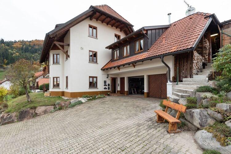 Appartement Duitsland, Baden-Wurttemberg, Kleines Wiesental - Raich Appartement DE-79692-06