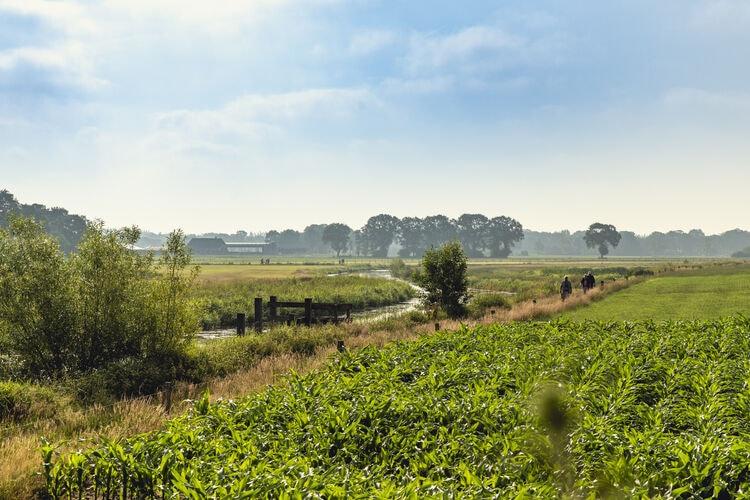 Chalet Nederland, Overijssel, Zuna Chalet NL-7466-04