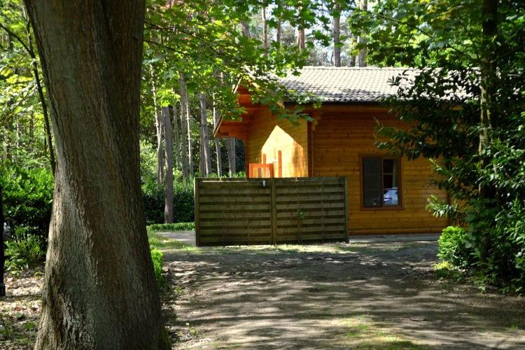 Vakantiewoning België, Antwerpen, Wechelderzande vakantiewoning BE-2275-03