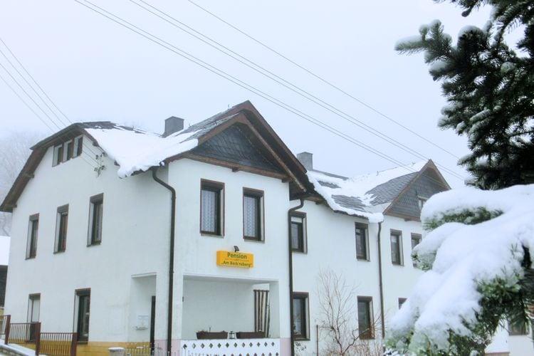 Appartement Duitsland, Saksen, Muldenhammer Appartement DE-08262-06