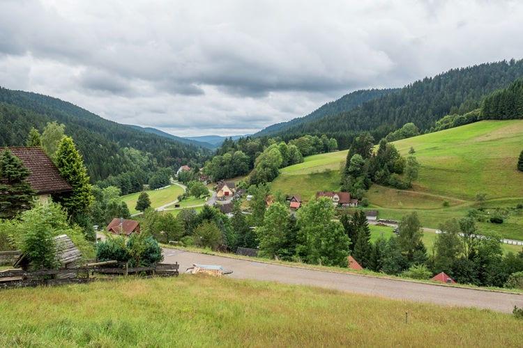 vakantiehuis Duitsland, Baden-Wurttemberg, Alpirsbach-Reinerzau vakantiehuis DE-72275-07