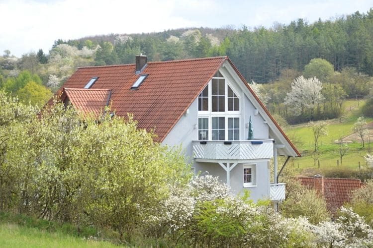 Appartement  met wifi  HollstadtBlick Saaletal