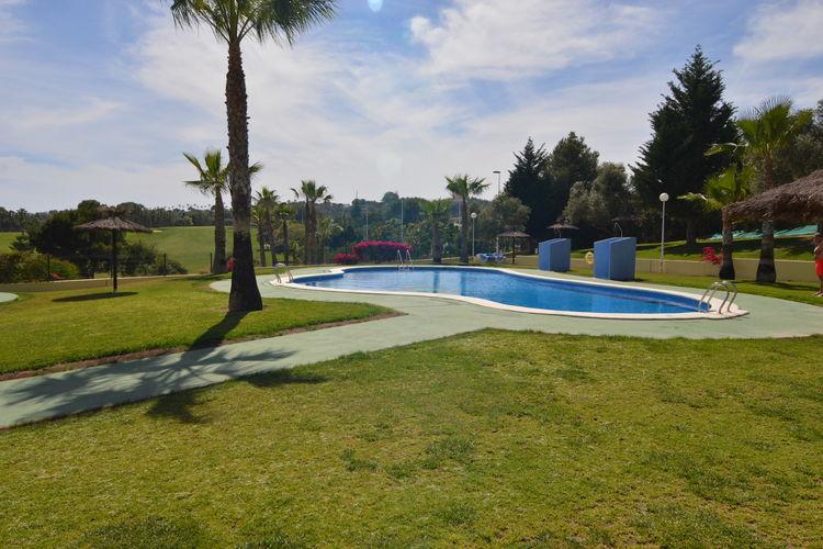 Appartement met zwembad met wifi  Orihuela-CostaAppartement Bea Campo