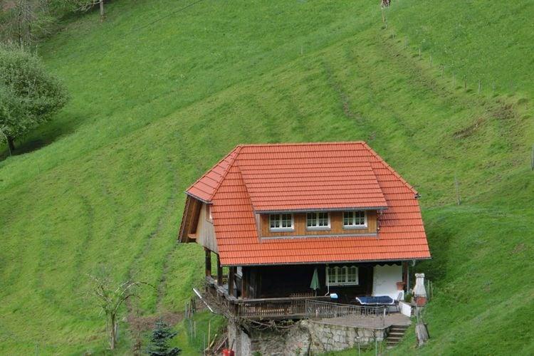 vakantiehuis Duitsland, Baden-Wurttemberg, Mühlenbach vakantiehuis DE-77796-05
