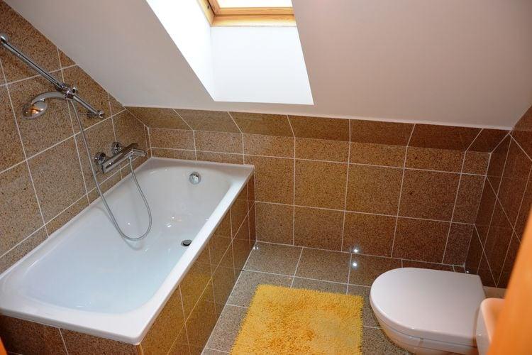 Appartement Tsjechië, Reuzengebergte - Jzergebergte, Rokytnice nad Jizerou Appartement CZ-51245-06