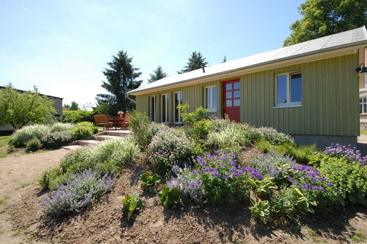 Ostsee Vakantiewoningen te huur Vriendelijk vormgegeven vakantiehuis in een absoluut rustige omgeving
