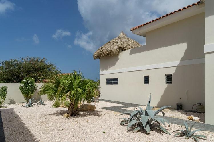 Vakantiehuizen  Curacao te huur Jan-Thiel- CW-00000-50   met wifi te huur