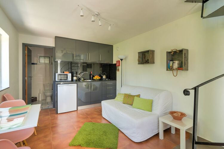 vakantiehuis Portugal, Porto, Abragão-Penafiel vakantiehuis PT-4560-04