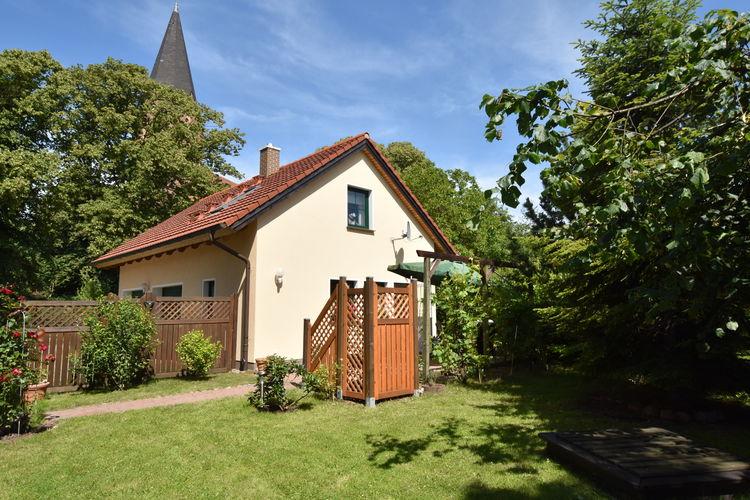 Vakantiehuis  met wifi  SteffenshagenAn der Kirche